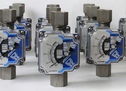 Variable area flowmeters M21